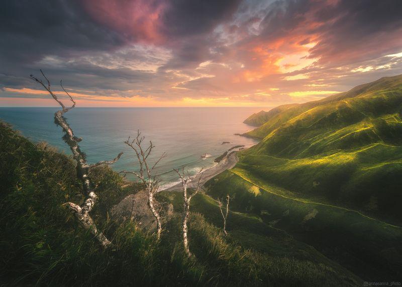 Тихоокеанская сторона Итурупаphoto preview