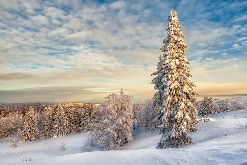 Зимний пейзажphoto preview