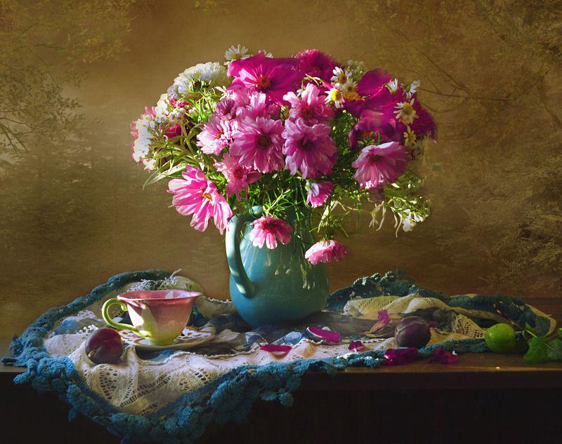 still life, натюрморт, цветы, фото натюрморт, лето, август, космеи, настроение ...вуалью грусти и печали...photo preview