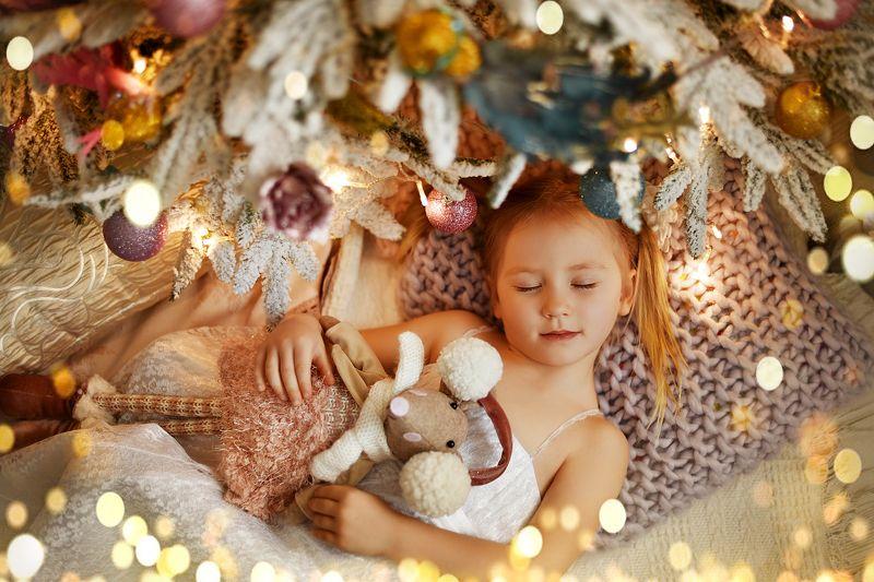 Новый год зима елка праздник девочка сон новогодний портрет детская сказка Новогодние сныphoto preview