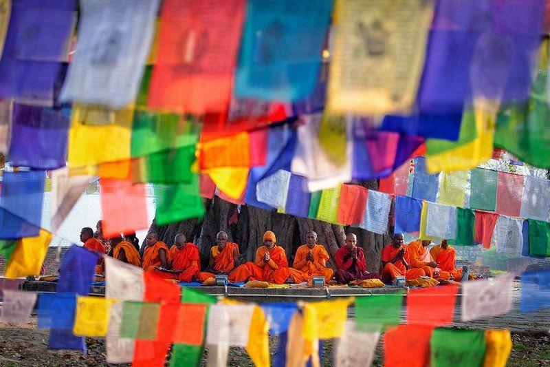 Буддистские монахиphoto preview