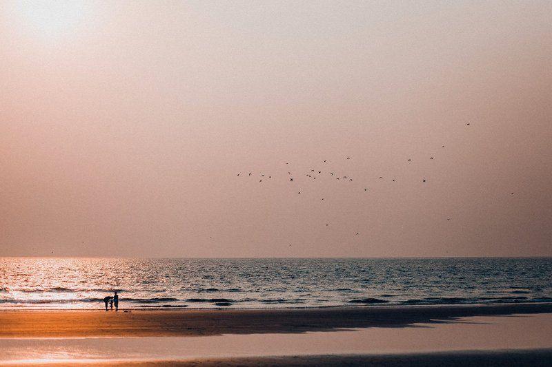 Индийский океан, Семья photo preview