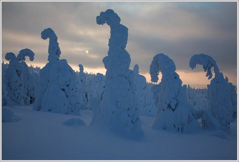 В Царстве Снежной Королевы(2).photo preview
