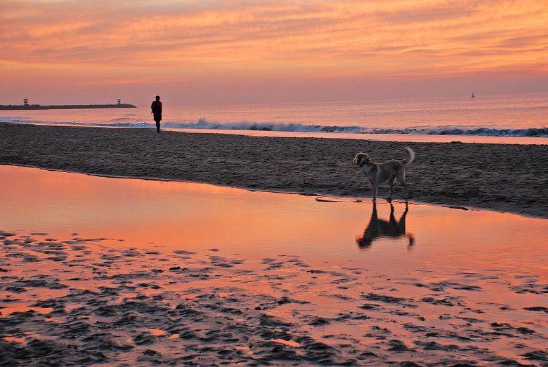Закат на Северном море, Гаагаphoto preview