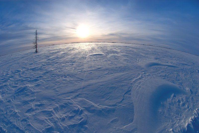 солнце, снег Ямалphoto preview