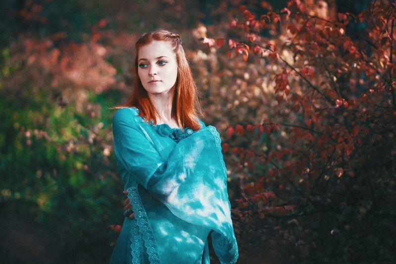 Sansa Starkphoto preview
