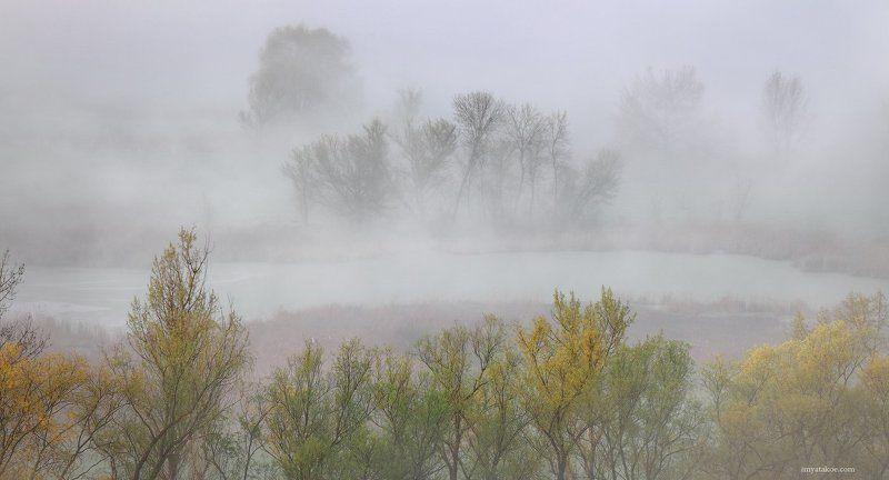 Утро туманноеphoto preview