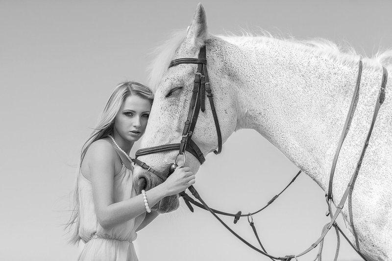 my horsephoto preview