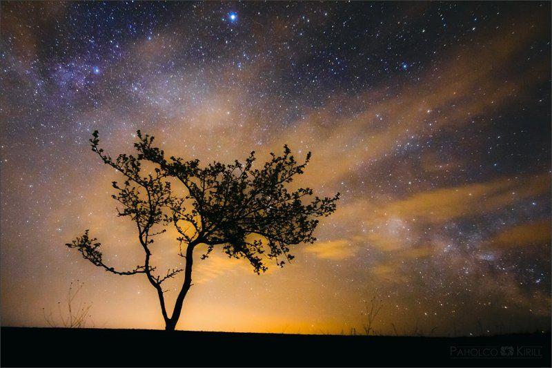 Звездная ночь, Звезды, Млечный путь ***photo preview