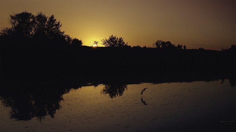 Вода, Денис клюев, Закат, Москва-река, Небо, Пейзаж, Птица, Река, Солнце Calmnessphoto preview