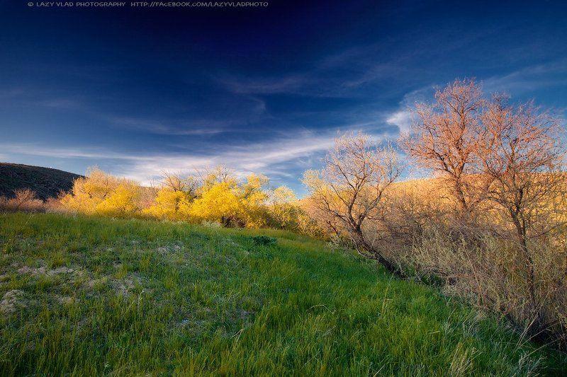 Немного осени веснойphoto preview