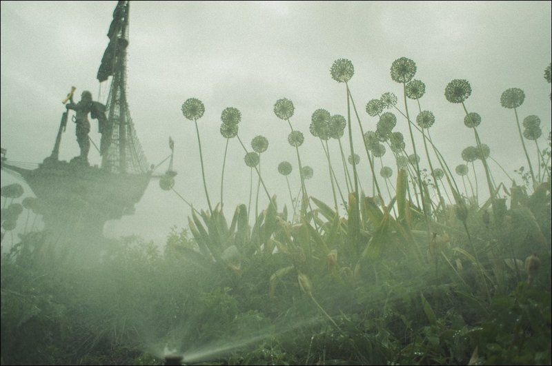 тарбеев, москва, петр, памятник, набережная, одуванчики, растения, туман, дождь Представление. Сырость и туман в Москвеphoto preview