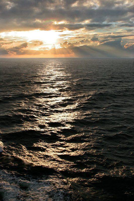 На море...photo preview