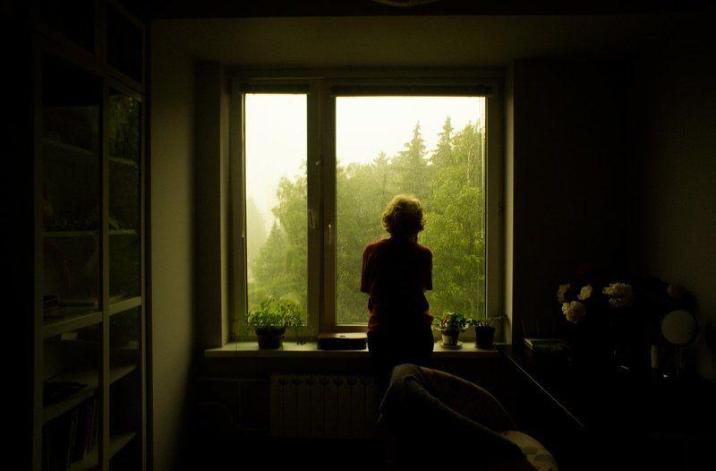 тарбеев, окно, дождь, силуэт, комната, цветы Дождьphoto preview