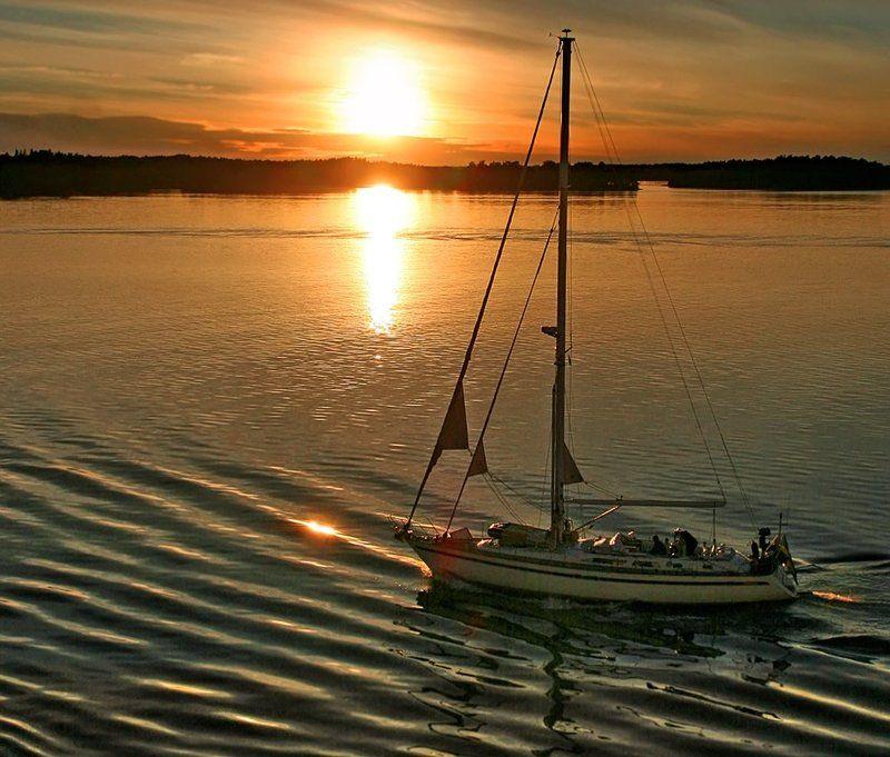 Вечернее солнце...photo preview