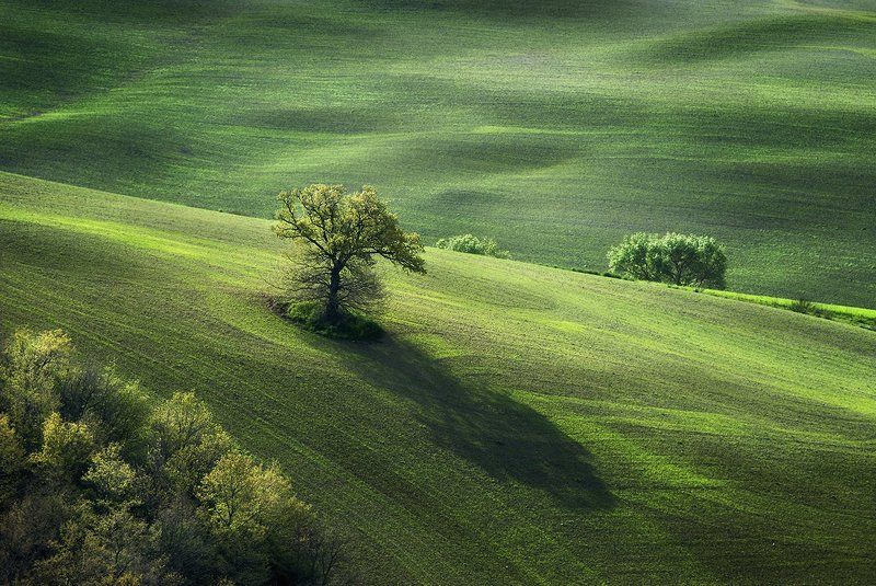Pastorale in greenphoto preview