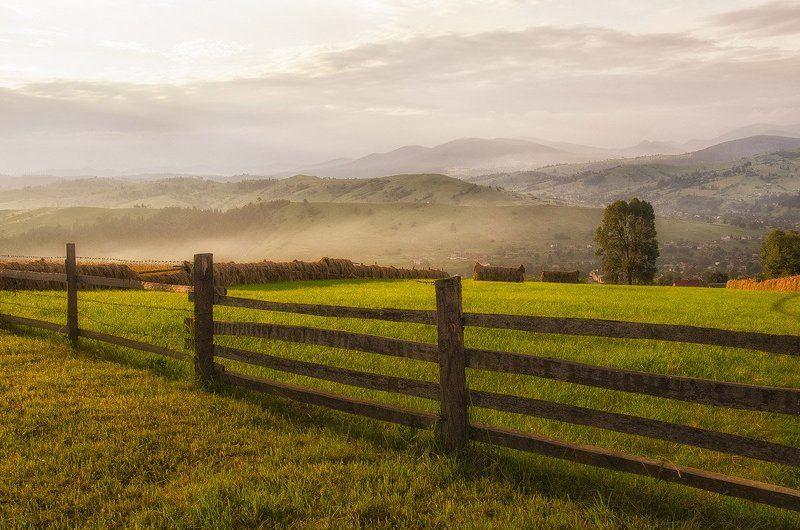 Забор, Пейзаж, Утро Солнечное утроphoto preview