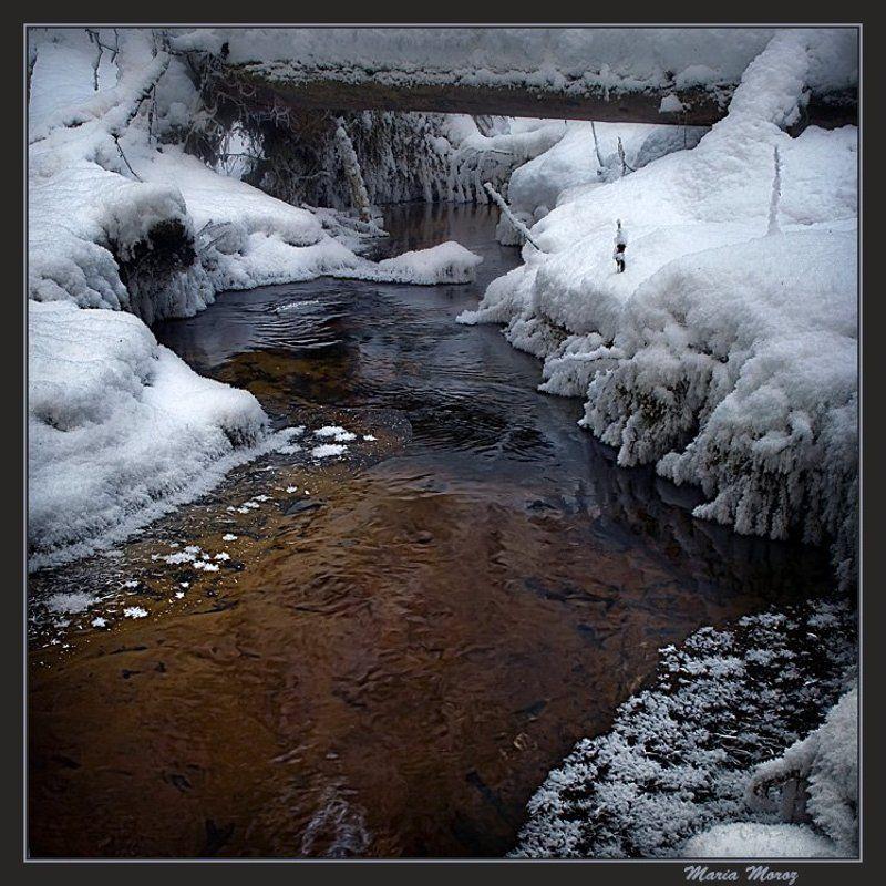 Холодный ручей, пушистые берегаphoto preview