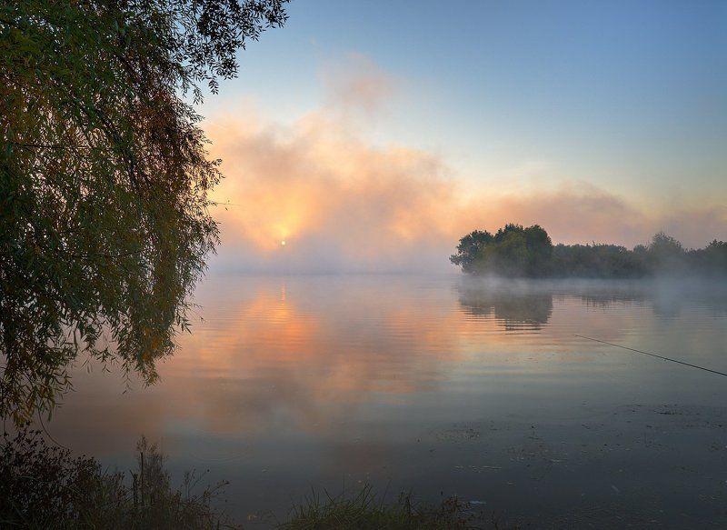 одно утро в туманеphoto preview