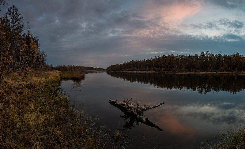 Закатная с корягойphoto preview