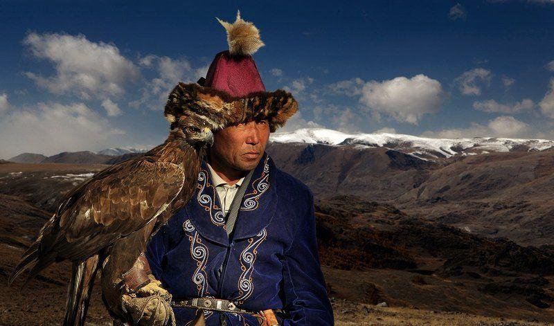 Беркутчи, Ловчая птица, Охота Хищникиphoto preview