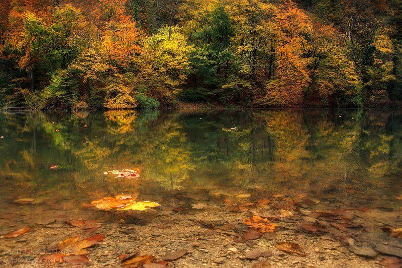 Осеннее озероphoto preview