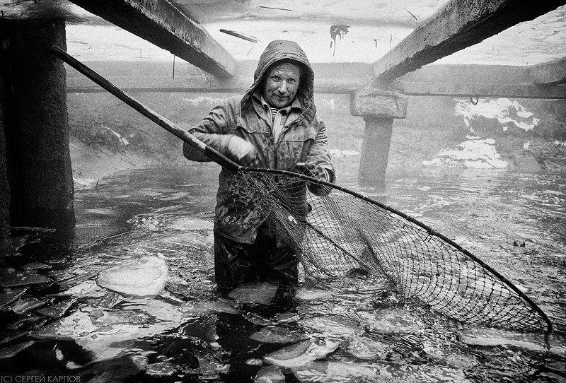 рыбак, жанр, садок Рыбакphoto preview