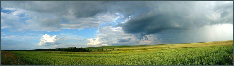 Эти летние дождиphoto preview