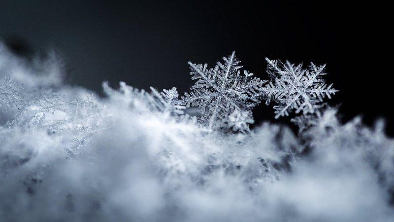 Macro, Macro snowflakes, Snowflakes, Макро, Макро снежинки, Снег ***photo preview