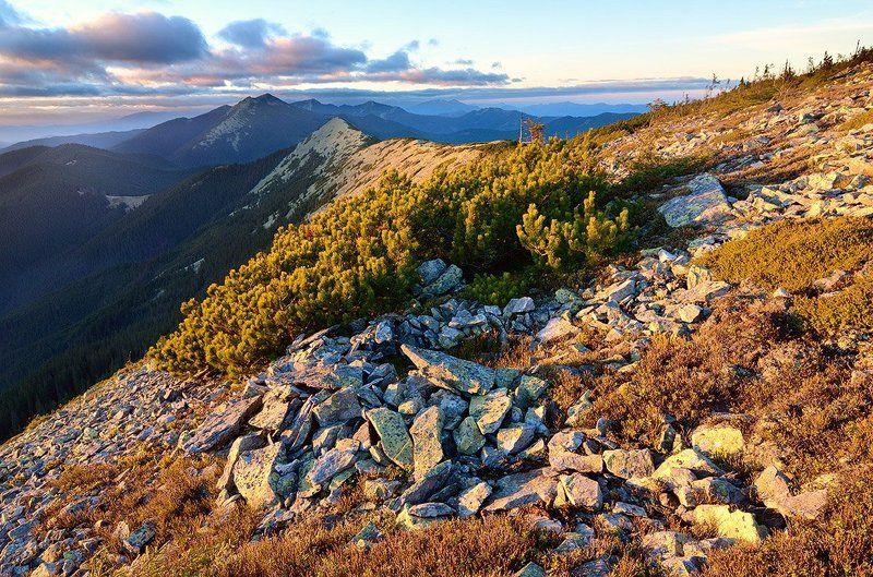 Bush, Karpaty, Landscape, Mountains, Stones, Sunset, Горы, Закат, Камни, Капрати, Кусты, Пейзаж photo preview