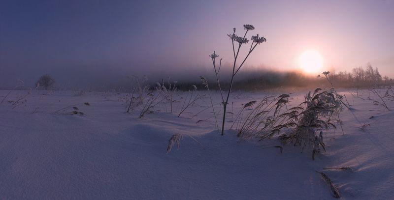 Зима, Иней, Рассвет, Солнце, Туман ~124~photo preview