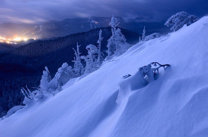 Dusk, Forest, Karpaty, Landscape, Pine, Snow, Trees, Деревья, Елки, Капрати, Лес, Пейзаж, Снег, Сумерки photo preview