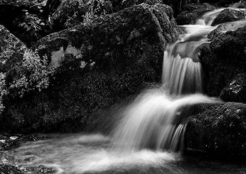 Acqua, Cascate, Mosso, Natura, Roccia, Torrente, Vegetazione Sottoboscophoto preview