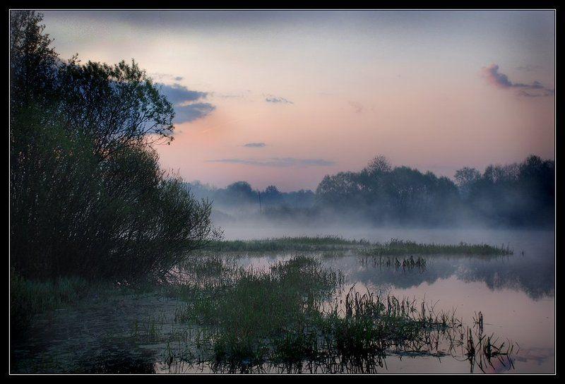 пейзаж, утро, туман, река Утро туманное...photo preview