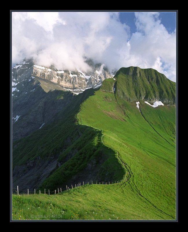 Большой швейцарский плетеньphoto preview
