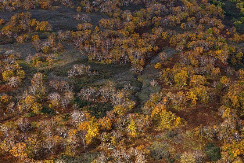 Вулкан, Камчатка, Фототур Осенний марафонphoto preview