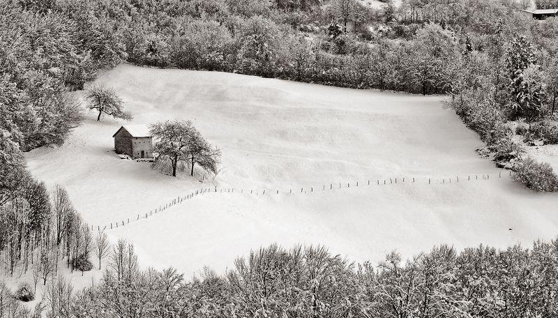 paesaggio,natura,alberi,neve,freddo,bianco,baita, Neve in lessiniaphoto preview