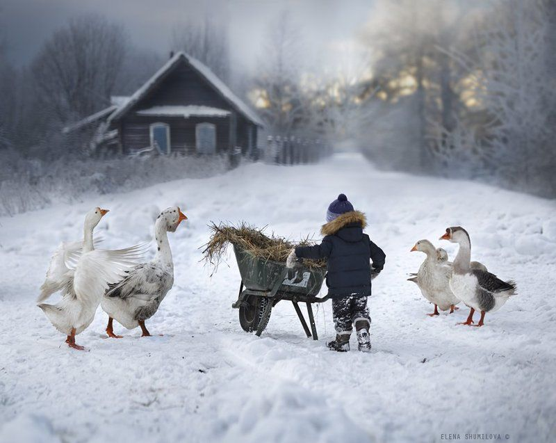 ..Напоследок о зиме..photo preview