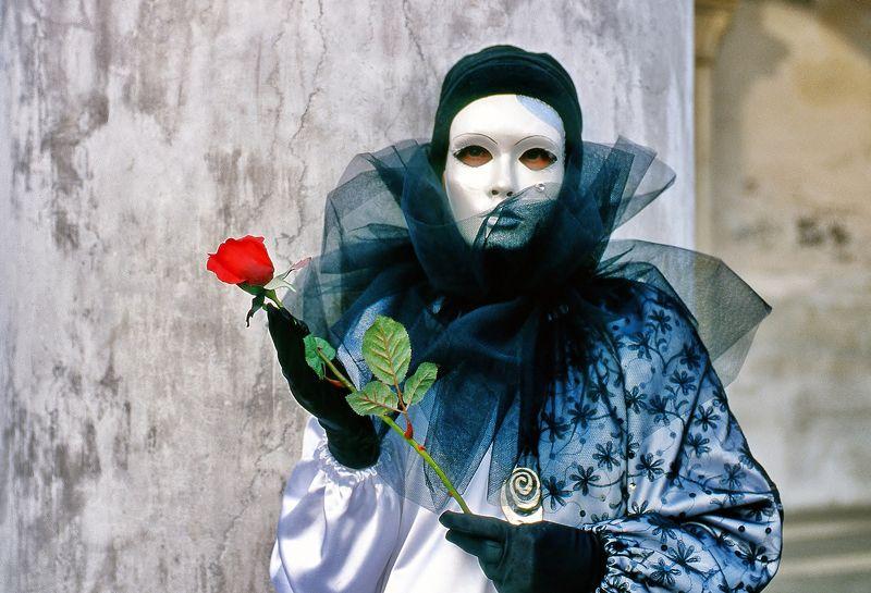 Maschera,rosa,velo,bianco,ritratto,rosso Mascheraphoto preview