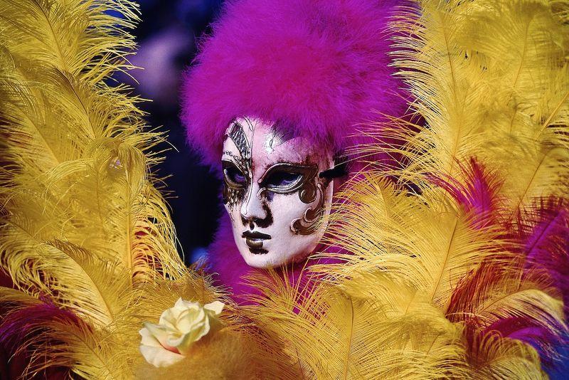 maschera,piume,ritratto,giallo,viola Mascheraphoto preview