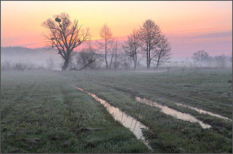 Утро Туман Рассвет Утренняя акварельphoto preview