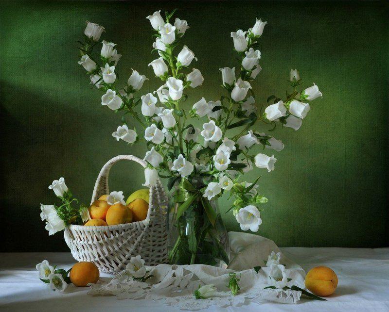 Колокольчики мои, цветики степные...photo preview