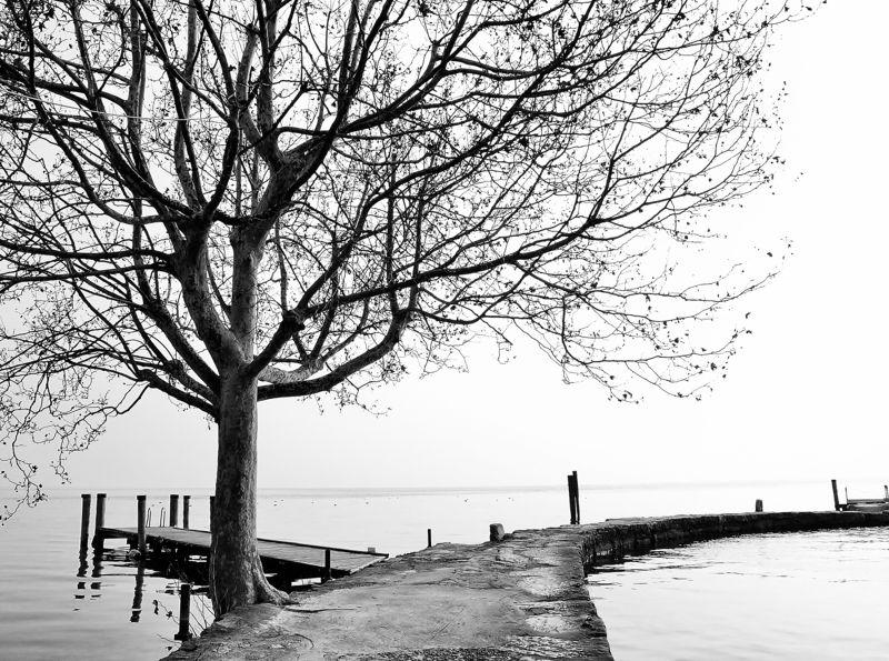 paesaggio,lago,acqua,albero,molo, San Vigiliophoto preview