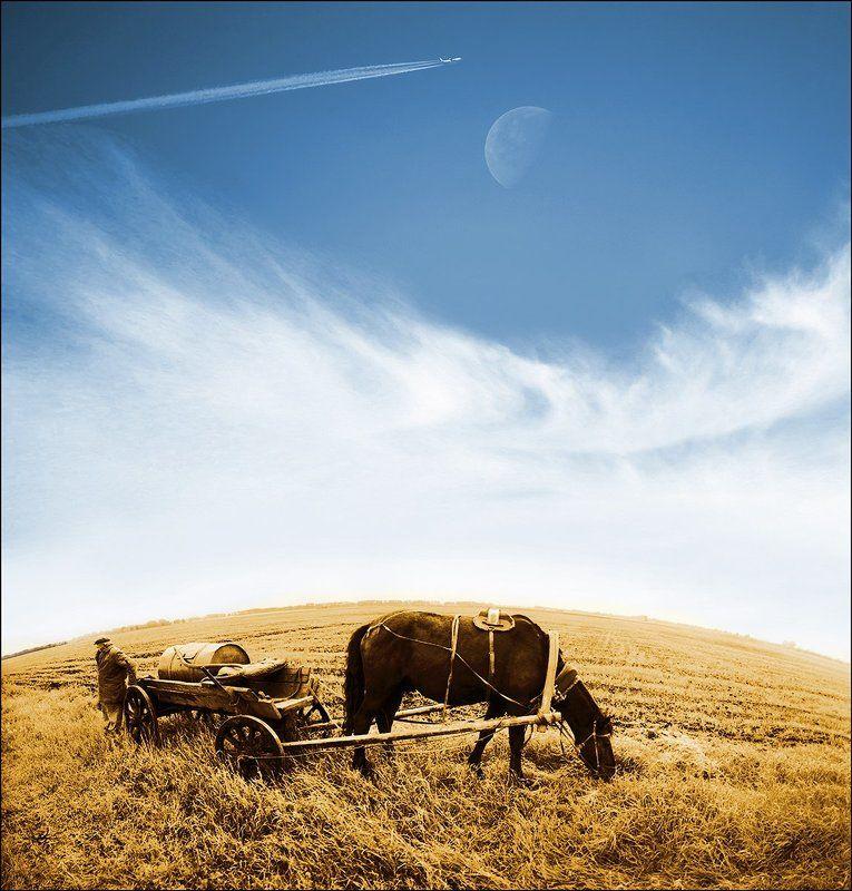 Лошадь водовоз, Луна, Небо, Самолет Чартер на Урумчи..photo preview