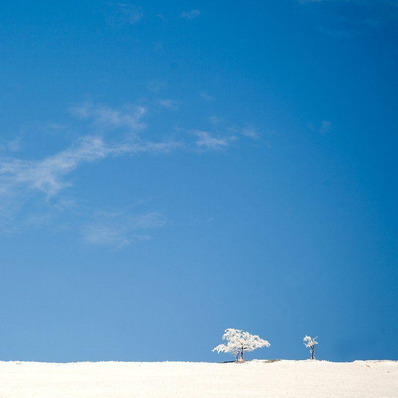 горы, зима, крым, деревья, снег, минимализм Sistersphoto preview