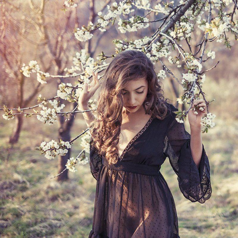 Portraits spring dreams dreamy cherry cherryblossom blossom erotic sensual  Dreams of spring...photo preview