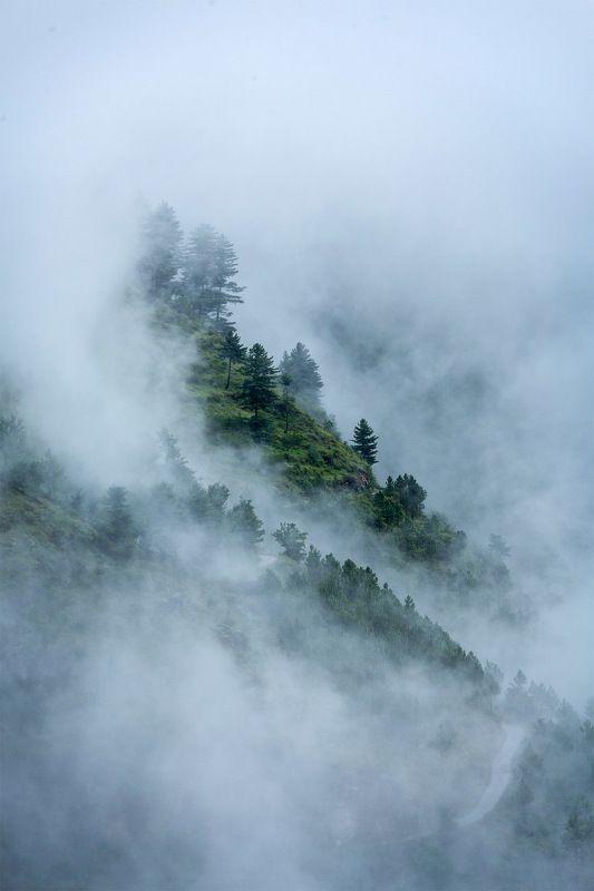 гималаи, облака Предгорья Гималаев в облакахphoto preview