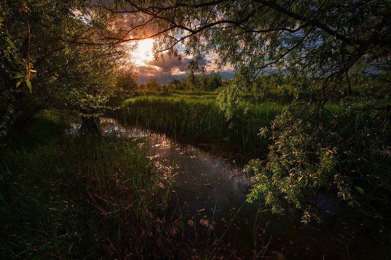 Закат на старой речкеphoto preview