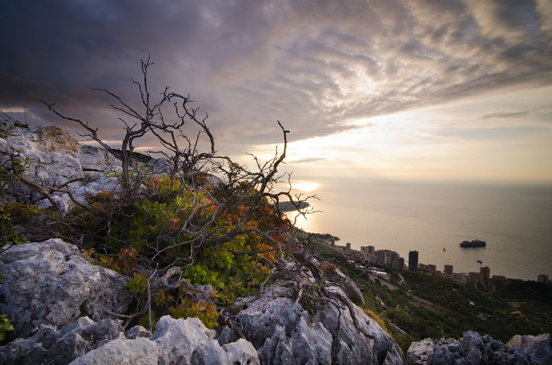 Монако, Лазурный берег, Монте-Карло, Monaco, Cote d\'Azur, Monter-Carlo Над Монако небо синеphoto preview