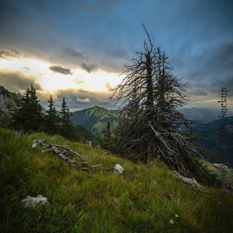 Австрия, Альпы, Горы, Тироль im Tannheimer Berge...photo preview